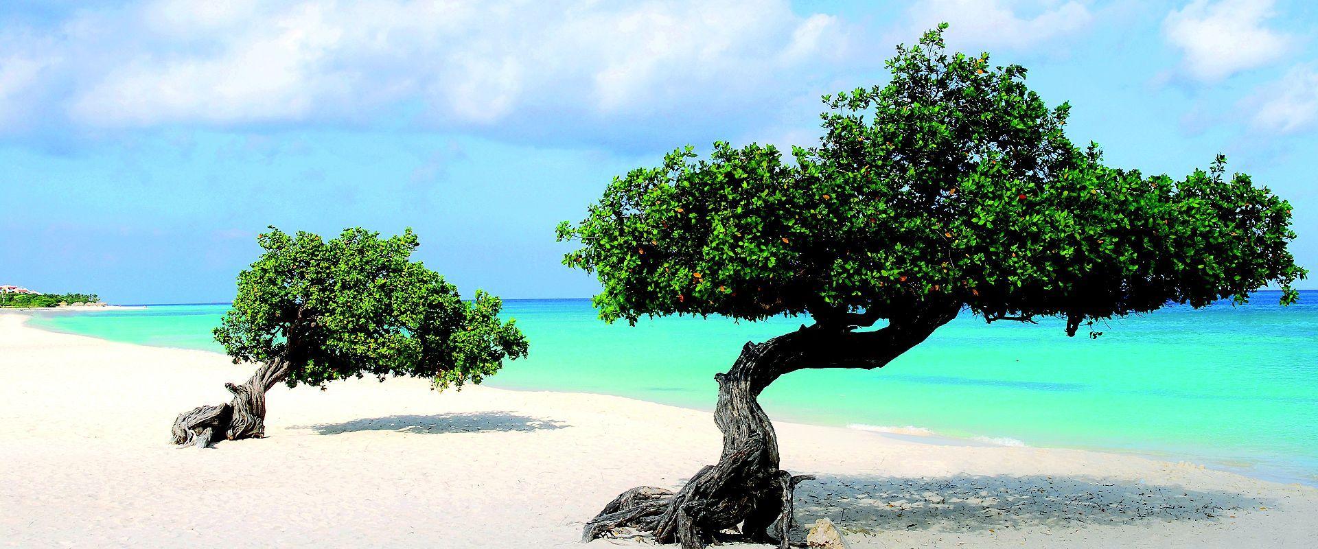 南カリブ海クルーズ 9泊10日