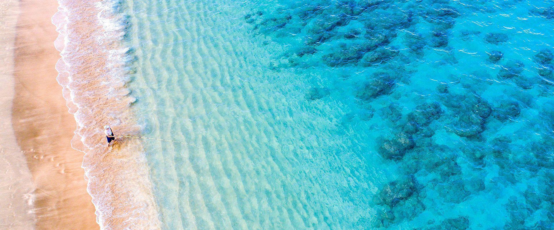 ハワイ・太平洋横断クルーズ 10泊11日