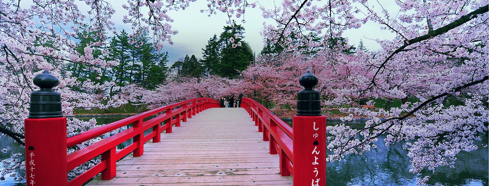 【オススメ!日本発着】 春の日本周遊・韓国クルーズ 10泊11日