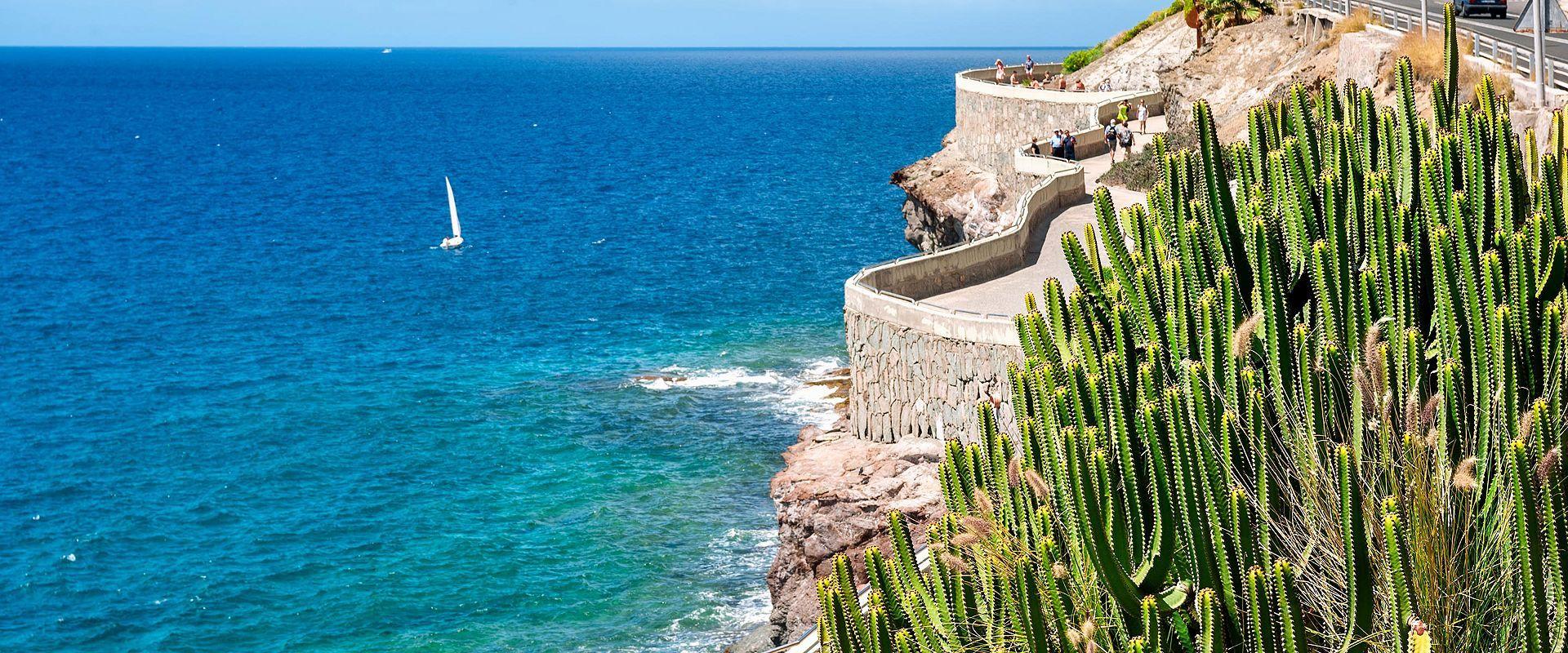 バルセロナ発タンパ着 大西洋横断とカナリア諸島・ココケイクルーズ 14泊15日