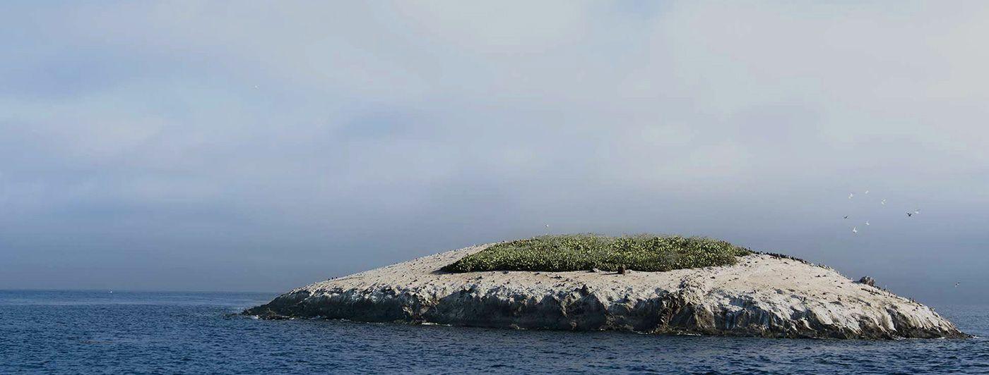タヒチ・南太平洋クルーズ 17泊18日