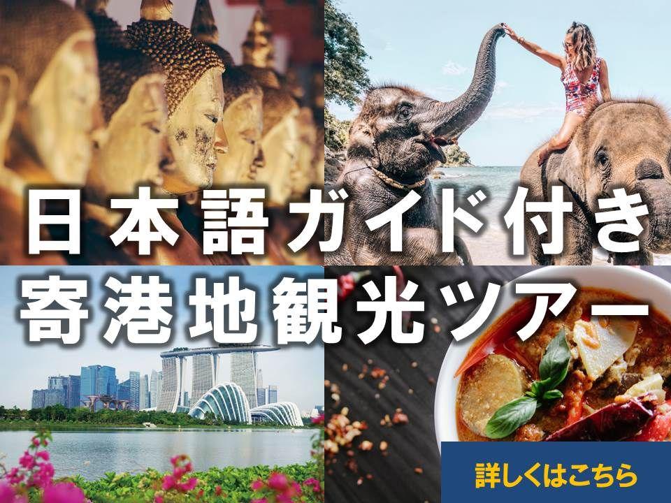 日本語ガイド付き寄港地観光ツアー